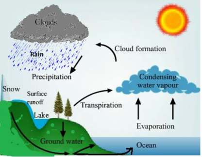 Answer the following question in detail:Explain water cycle with the help  of a diagram. | SnapsolveSnapSolve
